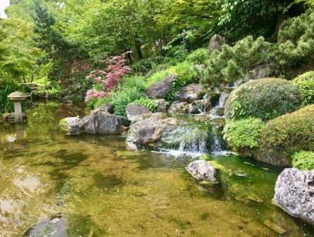 Veduta del giardino giapponese