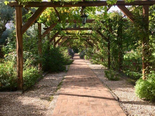 giardino dell'Orto Monastico dell'Abbazia di San Paolo fuori le mura.