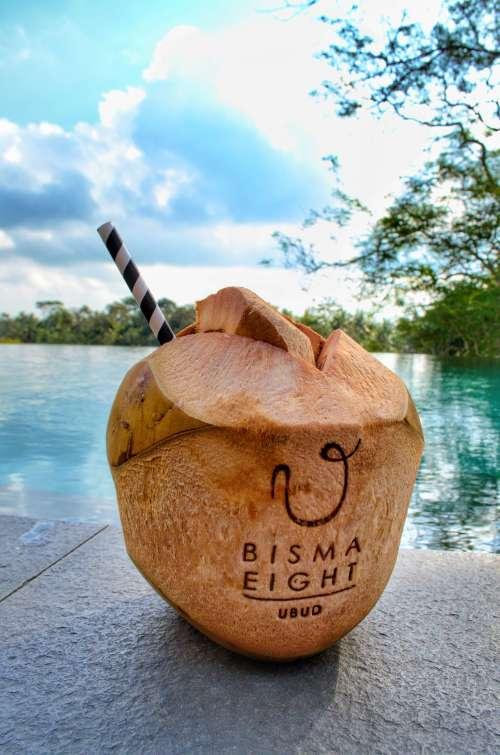 Fresh coconut at Bisma Eight, Ubud, Bali, Indonesia