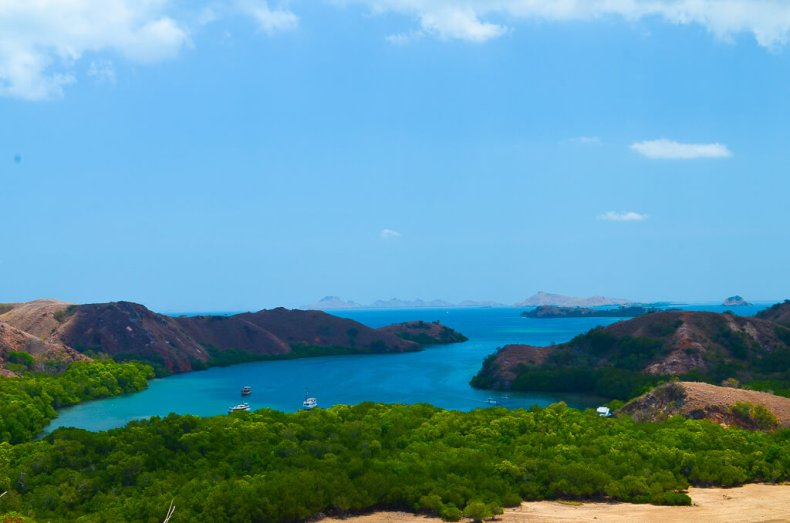 Komodo national park - trekking on Rinca island amongst the dragons