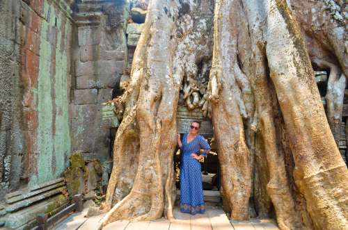 What to do and see - visit Ta Prohm tomb raider temple in Siem Reap, Cambodia