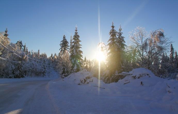Oslo -walking in a winter wonderland