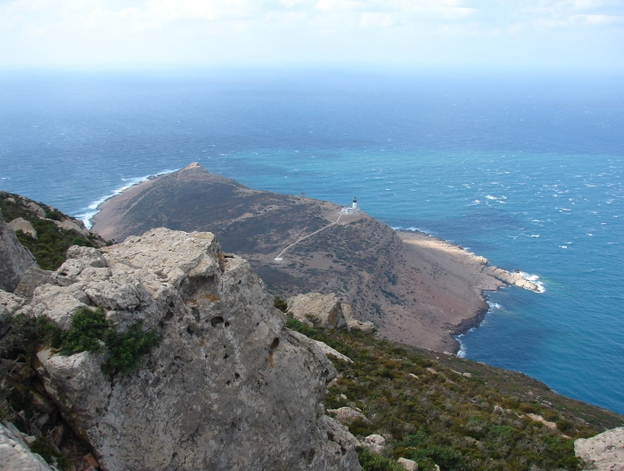 Cap Bon near Tunis in Tunisia