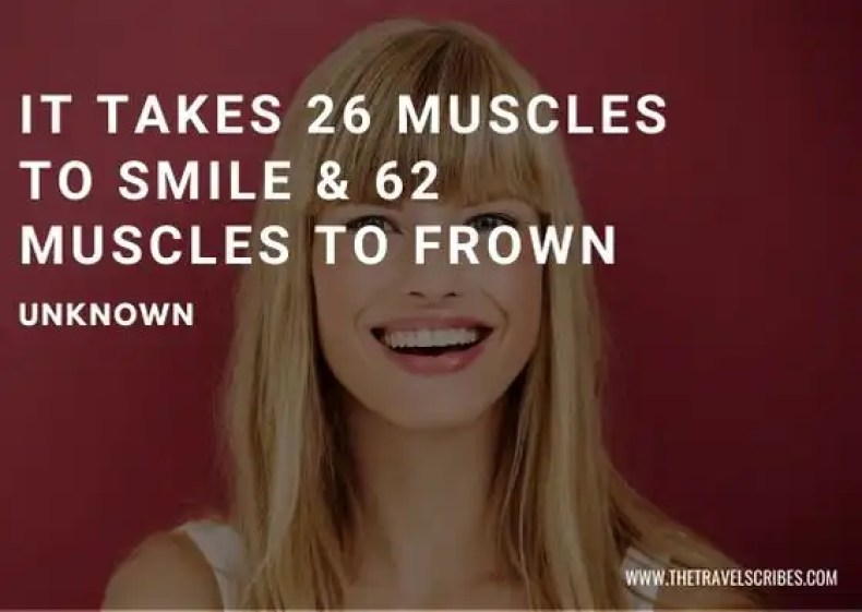 Smile Quotes Smile Captions - Improve your Day