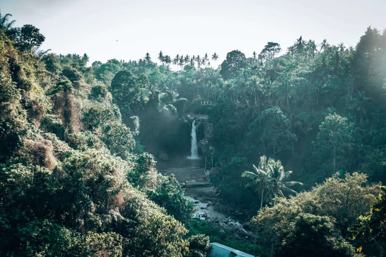 Ubud Waterfall - Tegenungan Waterfall from far