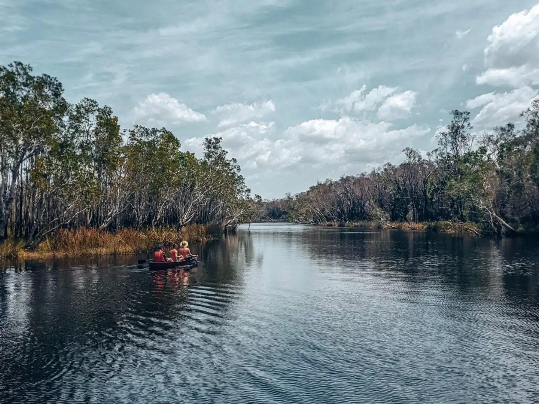 Kayaking in the Noosa Everglades