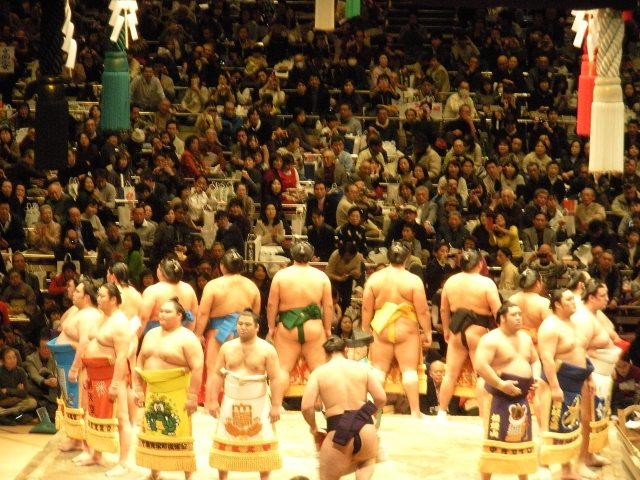 sumo wrestling tournament in tokyo japan