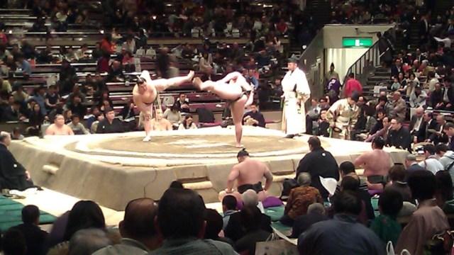 sumo wrestling match in tokyo japan