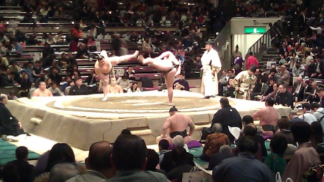 sumo wrestling match in tokyo japan