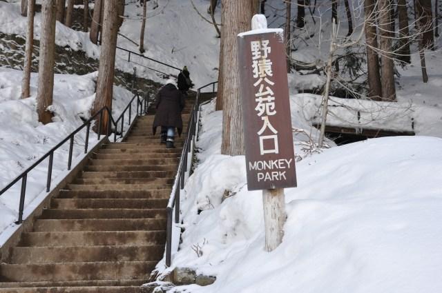 Japan snow monkey park nagano stairs