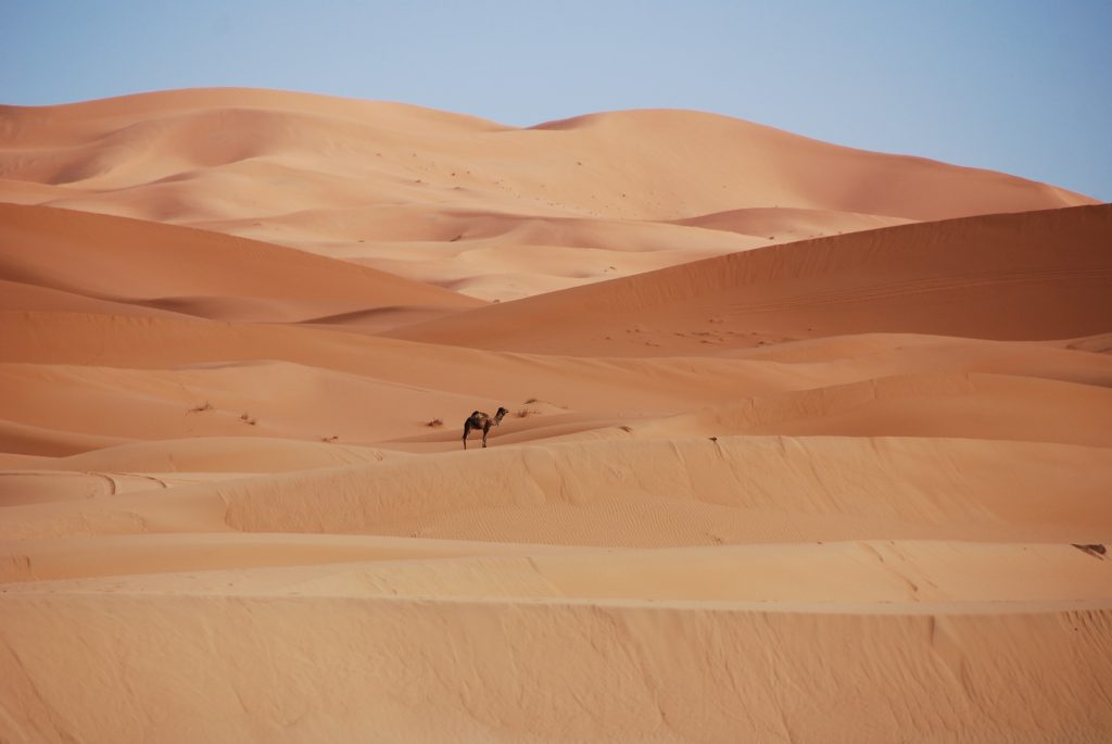 Working In Morocco