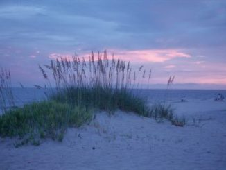 Gulf Shores and Orange Beach Lodging Options