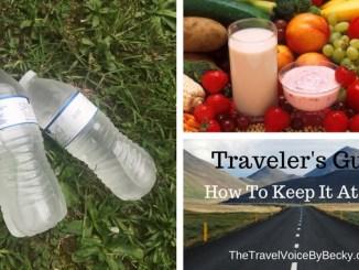 Traveler's Gut