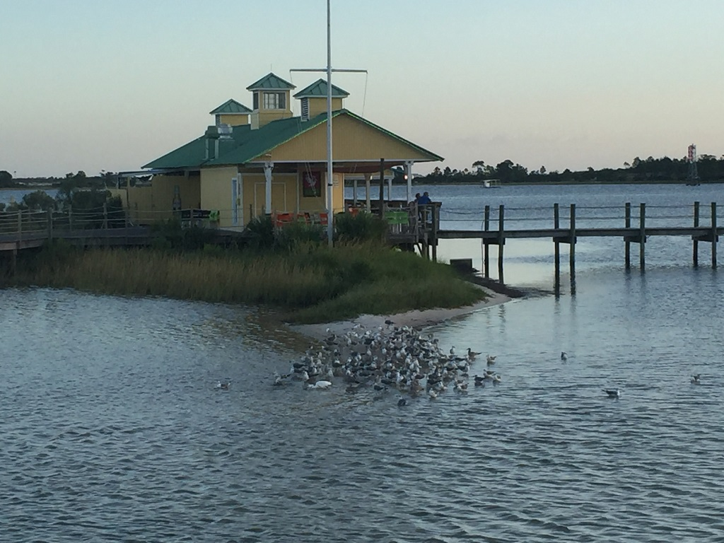 10 Things Your Family Will Love About Sheraton Bay Point Resort - Pelican's Bar & Grill