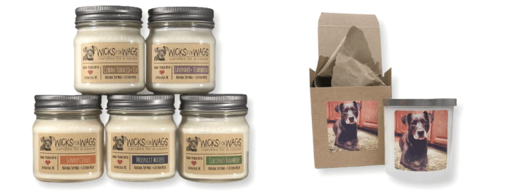 candles that raise money for rescue animals
