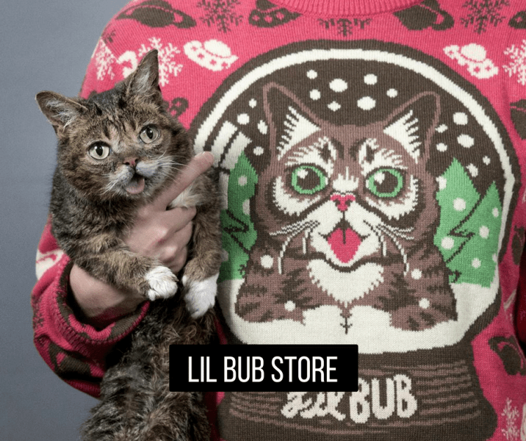 Lil Bub Holiday Gift Guide