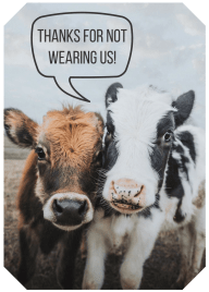vegan fashion cow friendly