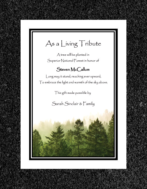 Memorial Tree Gift Certificates Gift Ftempo