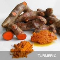 http://basiceating.blogspot.co.uk/2010/06/turmeric-curcuma-longa.html