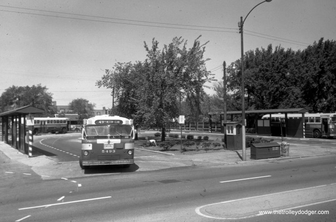 CTA 5493 is heading south from the Western and Berwyn loop, on Route 49B (North Western). This picture was taken after streetcar service ended in 1956, as the tracks appear to already be paved over and overhead wires removed.