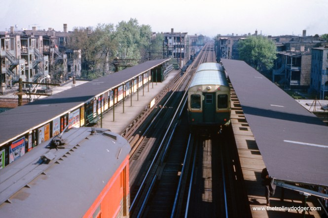 On May 15, 1960, a northbound CTA Jackson Park train is at 61st Street, while North Shore Line car 251, at left, is on a fantrip, running to places where NSL cars had not been since 1938. (William C. Hoffman Photo)