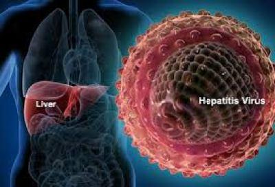 hepatitis-c