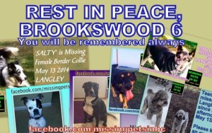 brookswood-6
