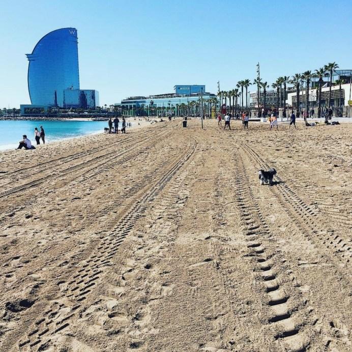 Barcelona City Break - visit the beach