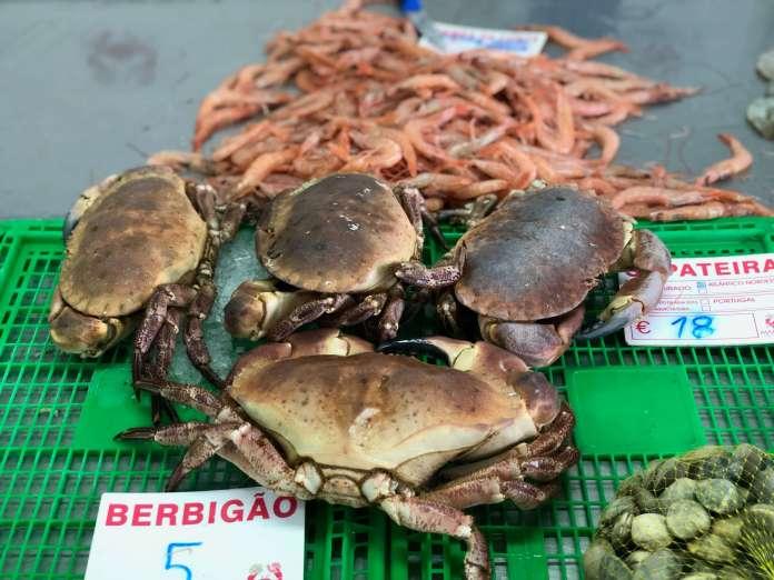 Seafood - Algarve