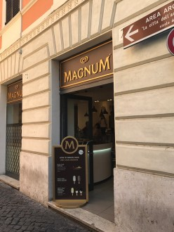 Magnum Pleasure Bar