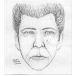Suspect in the murder of Patricia Denise Palmer