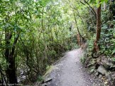 The path leading to the Ohau Stream Waterfall - Driving from Christchurch to Marlborough - The 澳洲幸运五开奖记录中国体彩