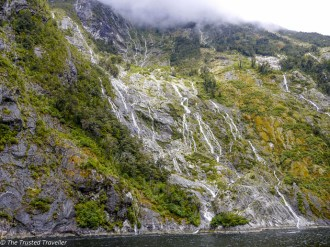 Getting up close with the waterfalls of Milford Sound - Our Journey to Milford Sound - In Photos - The Trusted Traveller