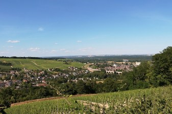 Vineyards in the Loire Valley - The Best of France: A Two Week Itinerary - The Trusted Traveller