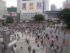 Famous Shibuya Crossing in action, Tokyo