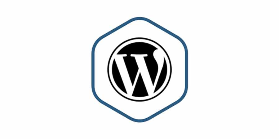 Bitnami WordPress Multisite 5.3-0 (64-Bit)