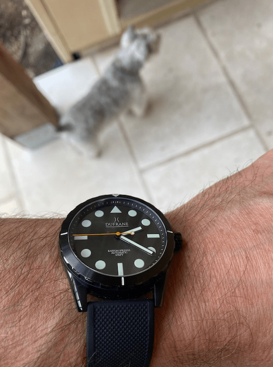 Dufrane Diver and dog (courtesy thetruthaboutwatches.com)