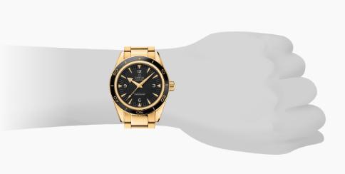 Hodinkee scam: we love this watch!
