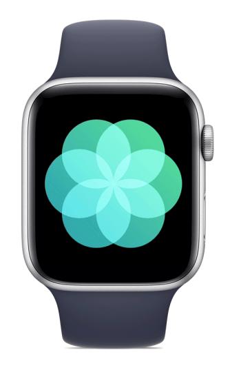 Survival watch - breathe app