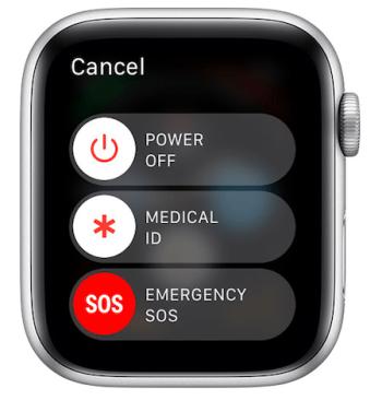 Apple SOS screen
