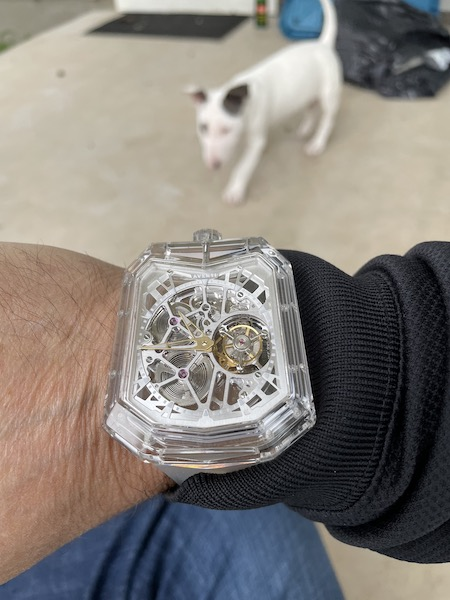 Dog tourbillon 5