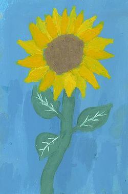 Cecis_sunflower_2