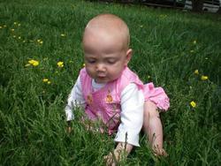 Baby_grass_2