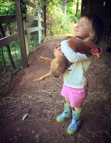 Chicken hug break