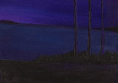 29-Darkness-rises-(purpl)
