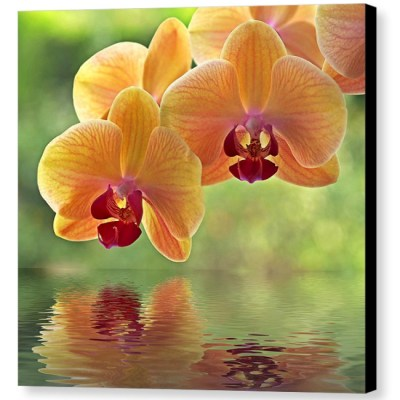 Oriental Spa - Photograph on Canvas