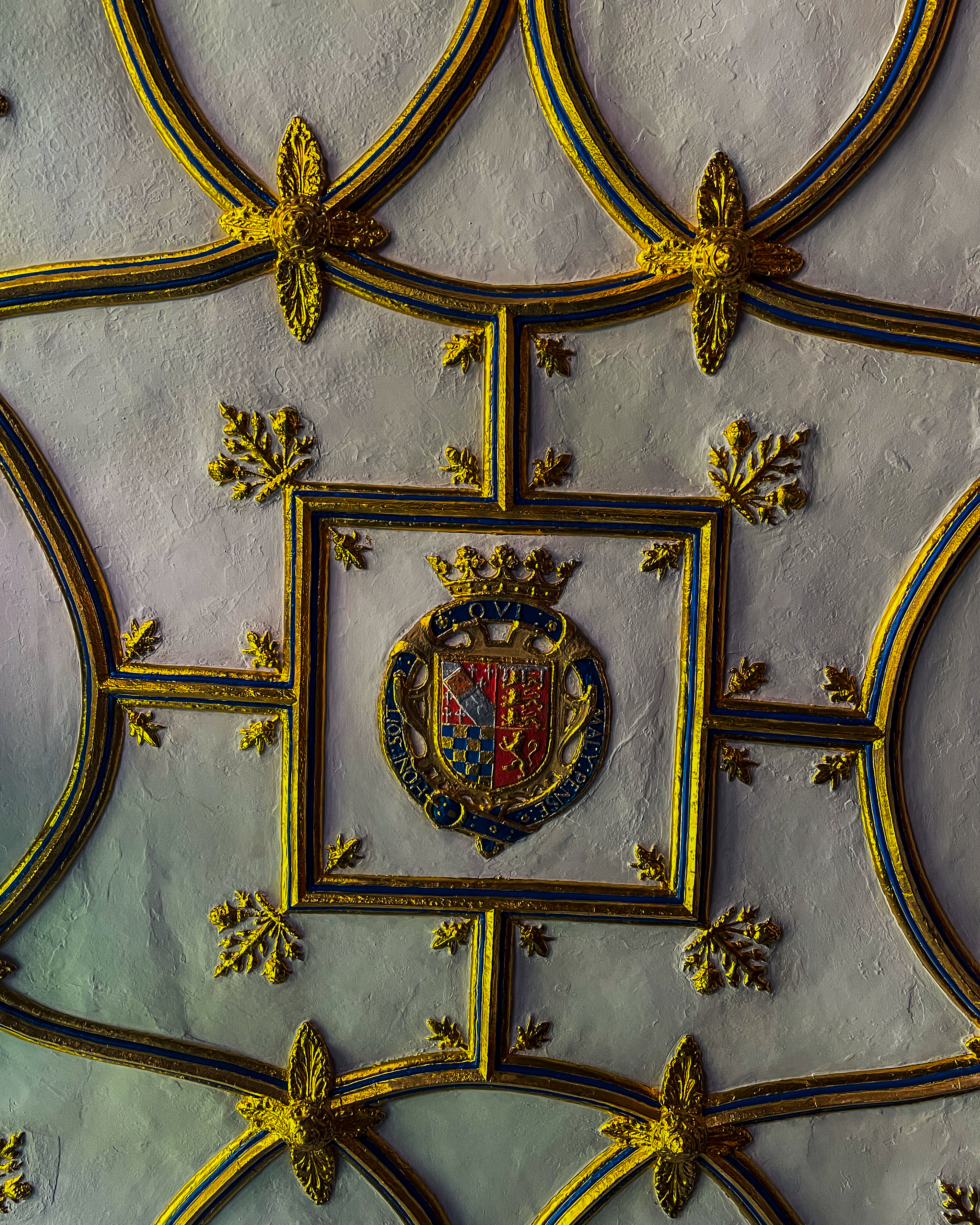Image of a Tudor ceiling at the Charterhouse