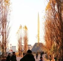 Tokyo December snapshots