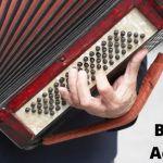 Best Beginner Accordion (Starter Guide)