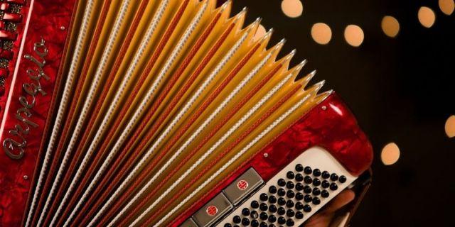 type of accordions